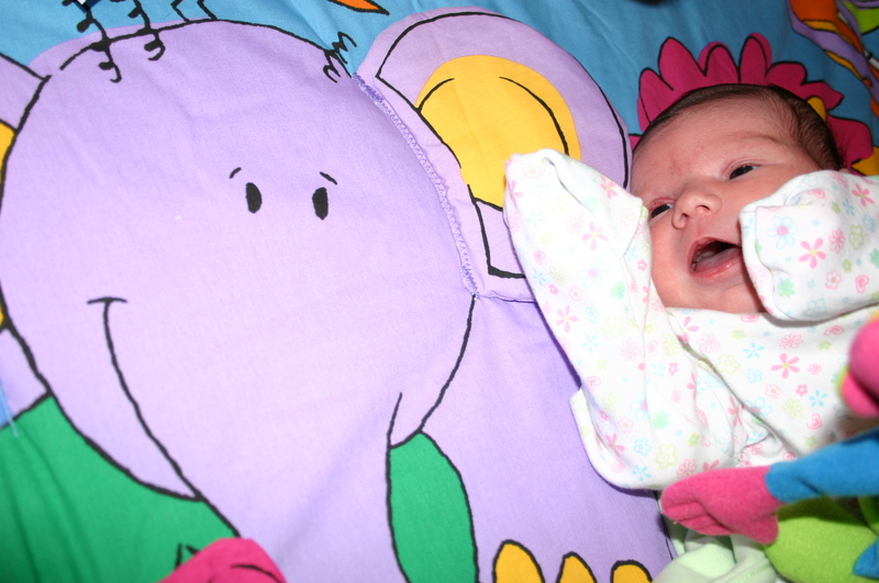 Big, purple, crinkly elephant!
