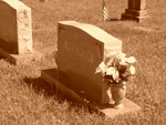 Papaw's Grave