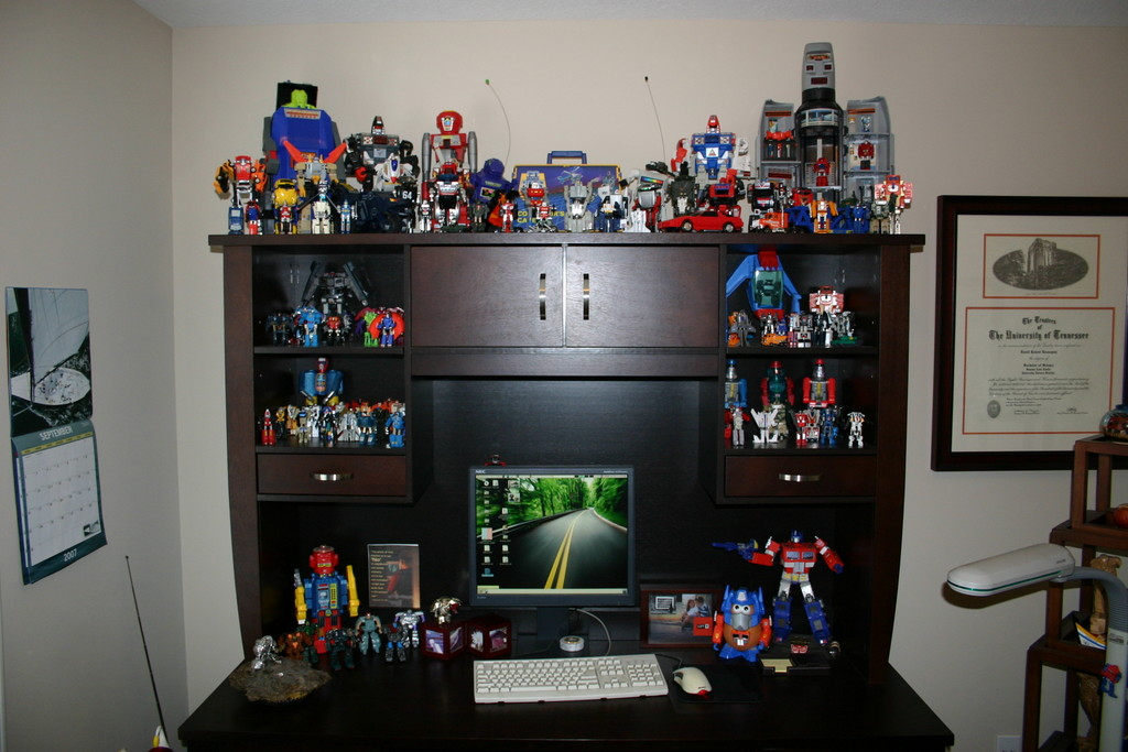 GoBot Collection before it got too big for my office